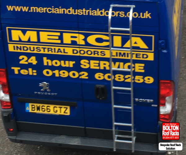 Fixed Rear Door Ladders